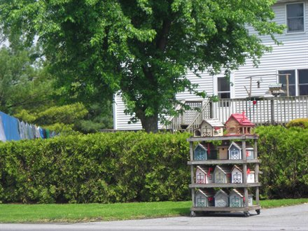 shelves of homemade birdhouses created and for sale along road in lancaster county PA
