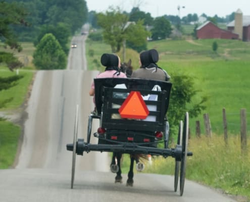 amish people in open buggy on road