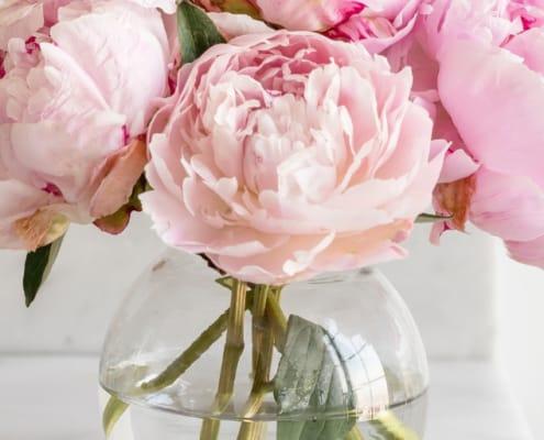 beautiful glass vase full of pink peonies