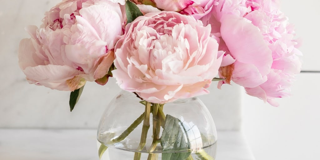 beautiful glass vase full of pink peonies