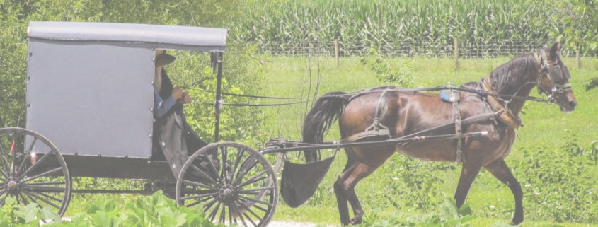 do amish pay taxes
