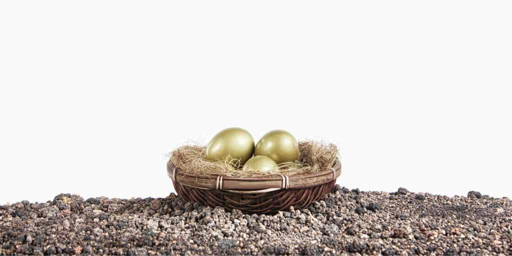 nest of gold eggs on white background