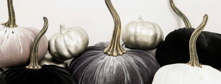 black, charcoal gray, and white pumpkins on a white background