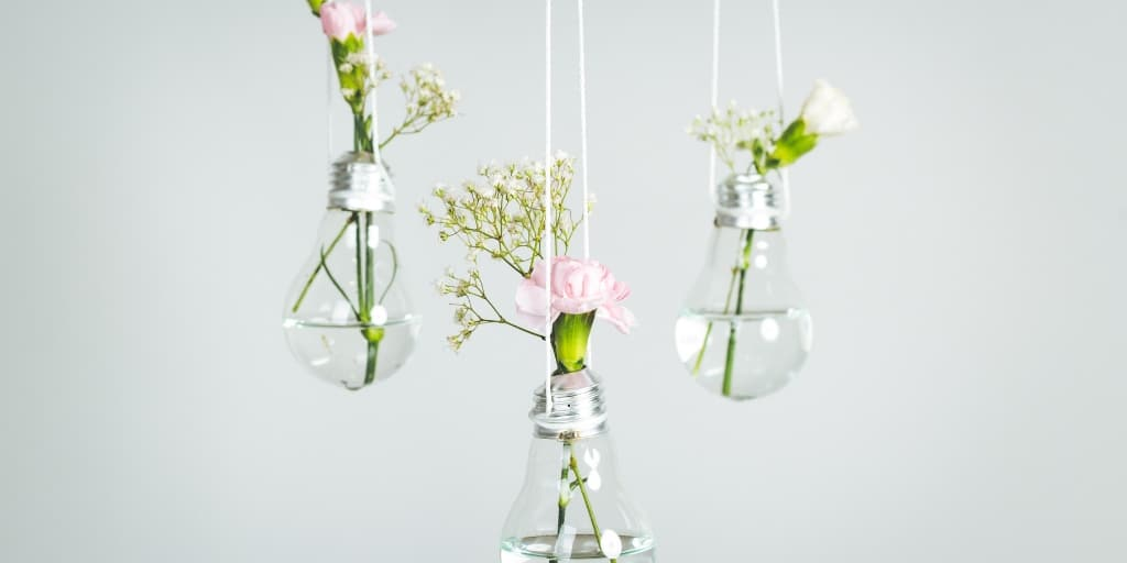 three hanging light bulbs made into flower vases to help lower electricity bill
