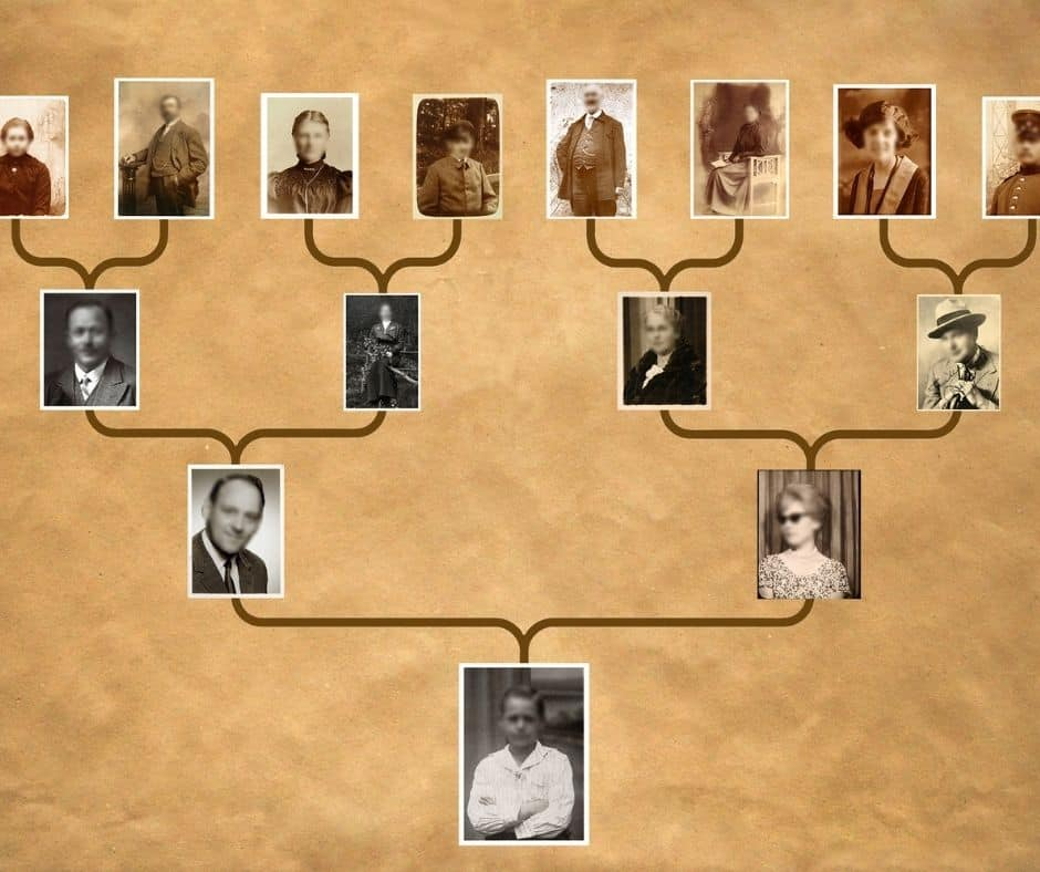 brown paper background with a picture based family tree