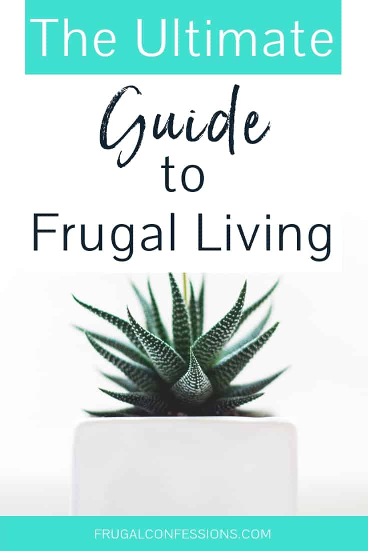 """potted succulent plant on white background with text overlay """"the ultimate guide to frugal living"""""""