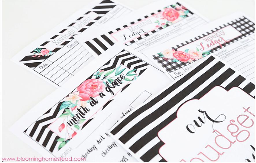 screenshot of blooming homestead's cute budget binder