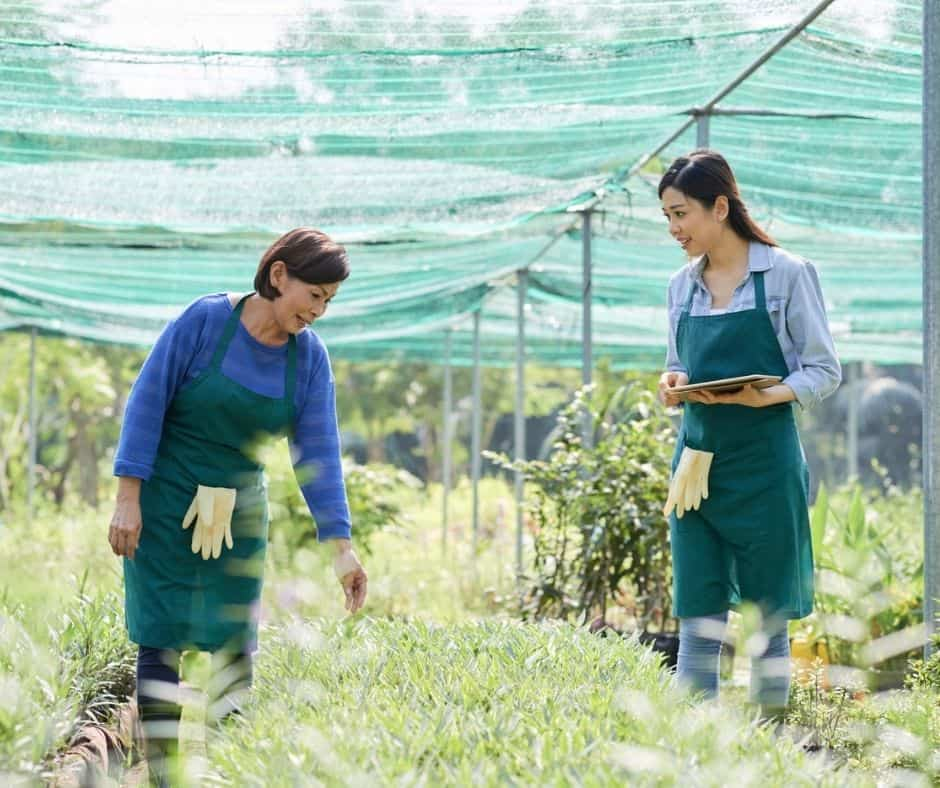 mother and adult daughter working in gardening, talking and smiling